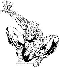 Disegni Da Colorare Spiderman Img
