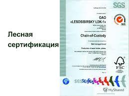 Презентация на тему Эффективность лесной сертификации Лесная  2 Лесная сертификация