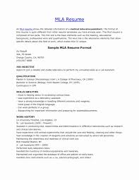 022 What Is Heading In An Essayple Mla Format Headings And