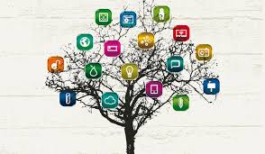 How Social Collaboration Improves Organisations Dynamic