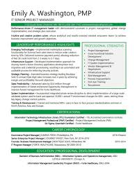 Modern Formatted Resume Templates Samples Senior It Project Manager Sample Word 2010 Modern