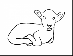 Small Picture Magnificent sheep coloring pages all hawaii dermatology pictures