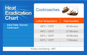 Cockroaches Thermapure