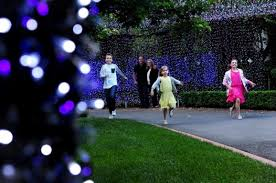 aussie lighting world. Photo: Melissa Adams; David Richards Has Installed 500,000 At His Forrest Home. Aussie Lighting World