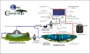 Public Swimming Pool Design Natural Pool Spa Duplicable City Center Natural Pool Spa Page