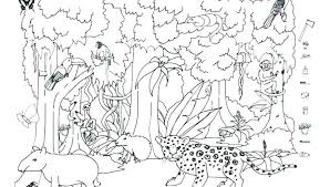 coloring pages of rainforest animals coloring pages printable