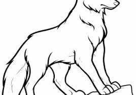wolf howling drawing anime. Simple Drawing Wolf Easy Drawing How To Draw A Of Howling Anime I