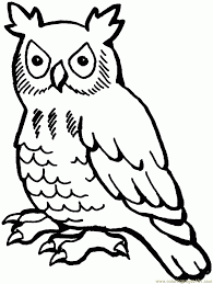 Be sure to scroll down the page to see all our free christmas coloring pages. Free Printable Owl Coloring Pages For Kids