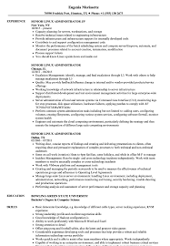 Linux Resume Template Senior Linux Administrator Resume Samples Velvet Jobs 6