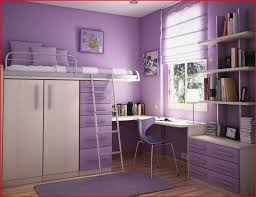 Small Bedroom For Girls 11 Small Bedroom Ideas For Little Girl Gallery Home Designs