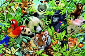 jungle dieren lijst