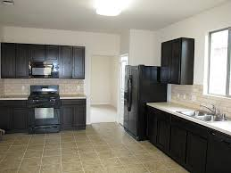 Small Picture Kitchen Designs Black Cabinets Black Appliances In Kitchen Small