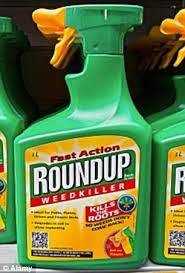 weed killer chemicals. Contemporary Chemicals Warning Glyphosate Is Most Commonly Used In The Popular Weedkiller Roundup And Weed Killer Chemicals R