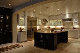 Sleek Fancy Kitchens Designs
