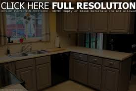 Cabinet Kitchen Cabinet Paint Best Painting Kitchen Cabinets Ideas