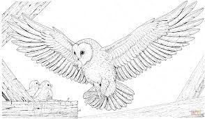 Small Picture Barn Owl Brings a Prey for Its Babies coloring page Free