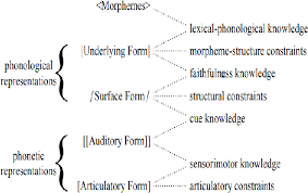 Figure 1 From The Computation Of Assimilation Of Arabic