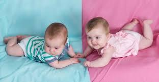 លទ្ធផលរូបភាពសម្រាប់ bayi kembar