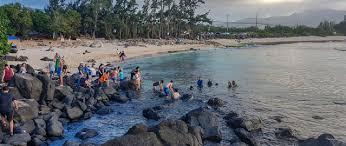 Laniakea Turtle Beach Hawaii Best Time To Visit Top
