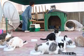 chat et rencontres en maroc