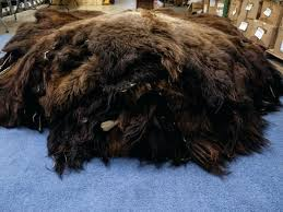 buffalo hide rug we can ship up to hides at a time using sy crate as buffalo hide rug