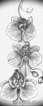 черно белый эскиз тату рисункок орхидея 11032019 010 Tattoo