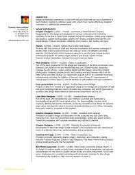 25 Motion Graphic Designer Resume Sample Free Sample Resume