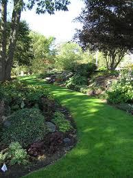 Landscape My Backyard