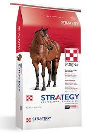 strategy professional formula gx horse
