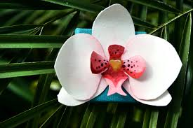 Paper Orchid Flower Paper Orchids Other Colors Available Art By Natalie Banaszczyk