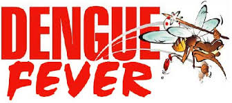 Image result for DENGUE