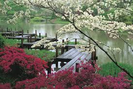 Lawn & Garden:Japanese Garden Landscape Design Japanese Garden Large Pond