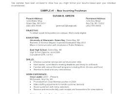 Examples Of Objective Statements On Resumes Marketing Resume Objective Statements Simple Resume Format