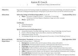 Resume Maker Online Awesome Free Resume Maker Online Aomiu