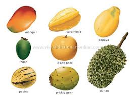 tropical fruit names. Fine Fruit Exotic Fruits And Their Names   Fruits Window Sills Again Lacquer  Again Lots Of Tropical Fruits To Tropical Fruit