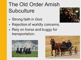 chapter culture ppt video online  the old order amish subculture