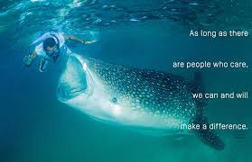 Save Our Seas Words To Live By Inspirational Quotes Quotes Sayings