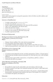Sample Youth Coordinator Resume Resume Template Directory