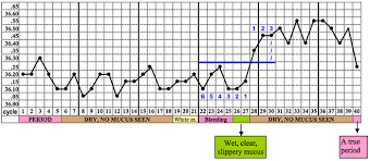 Menstrual Cycle Temperature Chart Fertility Education Training