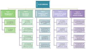 Flex Sentinel 3 Tandem Mission Flex Bridge Study Org Chart