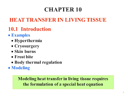 chapter 10 heat transfer in living tissue 10 1 introduction examples