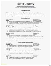 It Resume Template Word Enchanting 48 Best Resume Templates For Word Sample Best Professional Resume