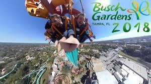 busch gardens vlog ta fl 2018