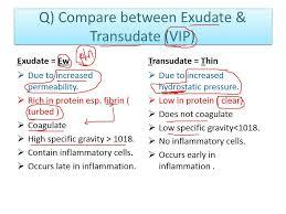 Inflammation 3 (excudate Vs transudate ) VIP .