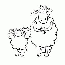 Leuk Voor Kids Timmy En Lunettiena For Shaun The Sheep Film