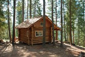 Small Picture small log cabins Northwest log cabin 12X16 Small Cabin Forum