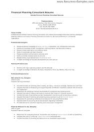 Consultant Profile Template