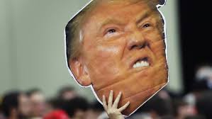 Image result for rise of trump image