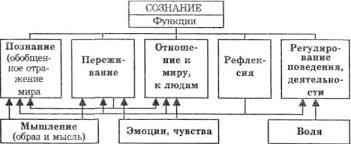 Реферат структура и функции сознания > вопрос решен Реферат структура и функции сознания
