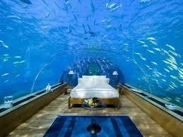 Awesome Aquarium Bedroom Interior Design